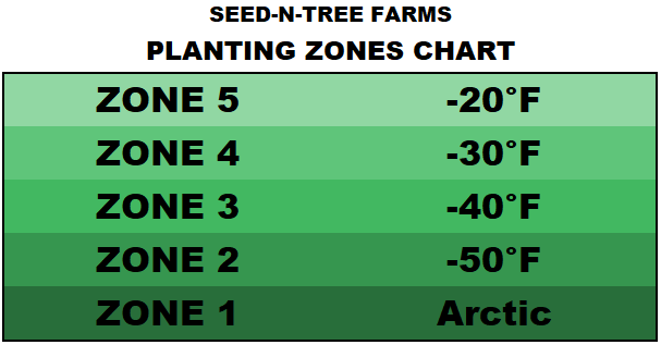 A chart that sorts numbered planting zones by their minimum degrees in Fahrenheit
